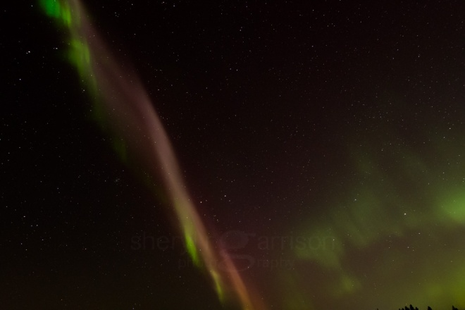 Proton Arc and Aurora Borealis-2958