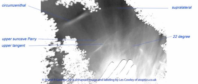 aoptics, Les Cowley-3
